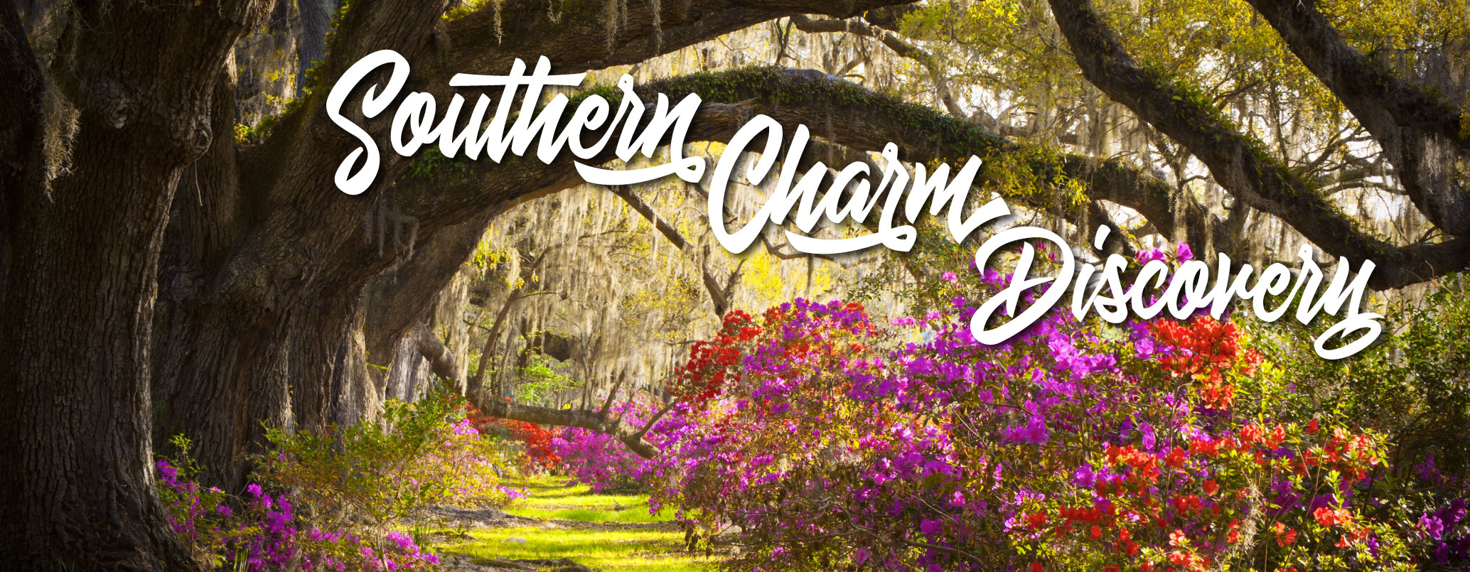 southern-charm-bkgd